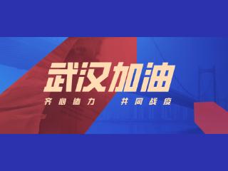 大数据揭示,武汉疫情捐款全景图
